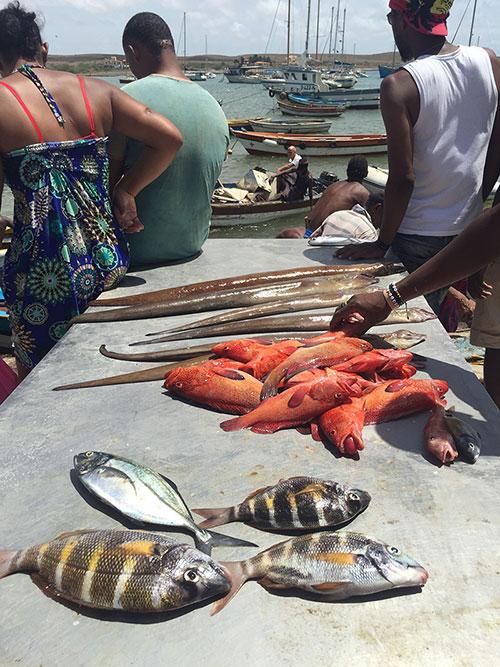 pesca-en-Cabo-Verde